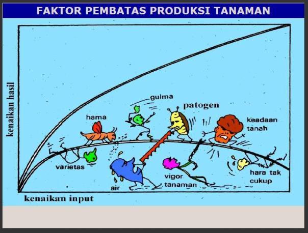 Faktor Pembatas Produksi Tanaman